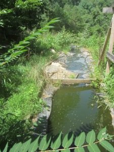 terraced ponds with solar pump